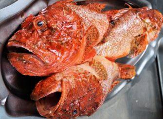 Chez Loury  Le Mistral Bouillabaisse Vieux-Port Marseille - Bouillabaisse - Provence - Restaurant - Marseille - Image 1