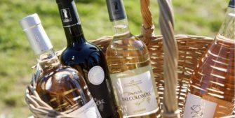 Domaine Valcolombe Côteaux varois Villecroze Haut Var - Domaine viticole - Producteur - Côteaux Varois Villecroze - Image 2