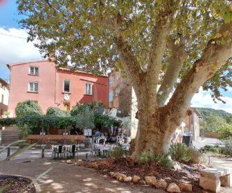 Restaurant Hôtel Le Saint Marc Aups Var Haut-Var Verdon - Hôtel - Restaurant - Haut Var Gorges du Verdon - Image 1