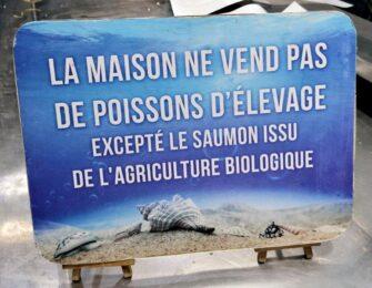 Aux Délices de la Marée Poissonnerie coquillages Le Lavandou - Métiers de bouche - Poissonnerie - Le Lavandou Bormes les Mimosas - Image 11