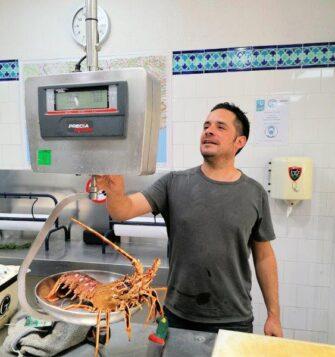 Aux Délices de la Marée Poissonnerie coquillages Le Lavandou - Métiers de bouche - Poissonnerie - Le Lavandou Bormes les Mimosas - Image 9
